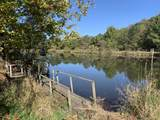 1370 Bass Hollow Road - Photo 86
