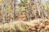 10781 State Hwy Mm - Photo 23