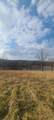 10781 State Hwy Mm - Photo 25