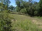 10360 Prarie Road - Photo 50