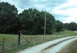 3040 Dogwood Tree Road - Photo 12