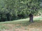 3040 Dogwood Tree Road - Photo 7