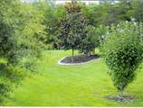 628 Stoneykirk Circle - Photo 9