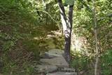 1431 Hicks Cave Road - Photo 4