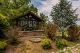 Tbd Clay Bank Cabin 89 Road - Photo 41