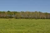 9401/9407 Farm Road 203 - Photo 3