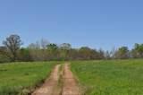 9401/9407 Farm Road 203 - Photo 66