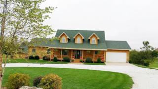 5370 N Willow Road, Ozark, MO 65721 (MLS #60073937) :: Greater Springfield, REALTORS
