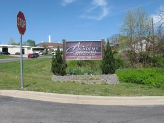 188 Knowledge Avenue C, Branson, MO 65616 (MLS #60076290) :: Greater Springfield, REALTORS