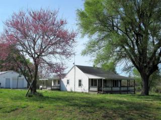 10141 W Farm Rd 76, Willard, MO 65781 (MLS #60076474) :: Greater Springfield, REALTORS