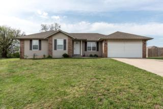 219 Dixie Avenue, Clever, MO 65631 (MLS #60076679) :: Greater Springfield, REALTORS