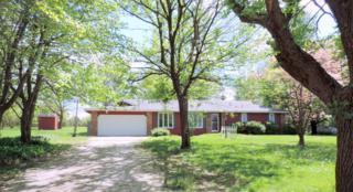 8178 E Farm Road 170, Rogersville, MO 65742 (MLS #60076796) :: Greater Springfield, REALTORS
