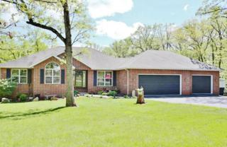 120 Spring Lane, Branson, MO 65616 (MLS #60077059) :: Greater Springfield, REALTORS