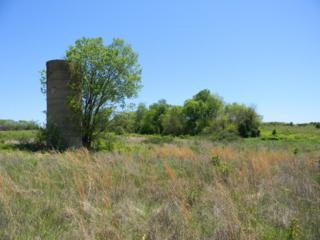 2000 N State Highway 125, Strafford, MO 65757 (MLS #60077193) :: Greater Springfield, REALTORS