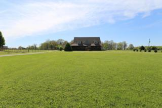 807 State Hwy Vv, Rogersville, MO 65742 (MLS #60077293) :: Greater Springfield, REALTORS