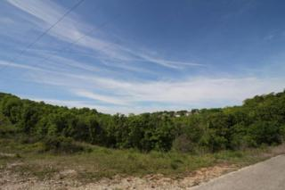 Lot 16 Hummingbird Hills, Branson, MO 65616 (MLS #60077486) :: Greater Springfield, REALTORS