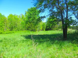 P-C North Camop Creek Road, Salem, AR 72576 (MLS #60077495) :: Greater Springfield, REALTORS