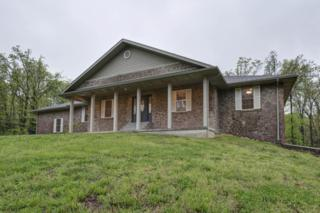 1845 Old Sycamore Loop, Marshfield, MO 65706 (MLS #60077503) :: Greater Springfield, REALTORS
