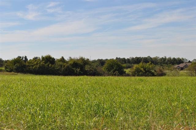 Tbd Private Road 2018, Monett, MO 65708 (MLS #60007225) :: Team Real Estate - Springfield