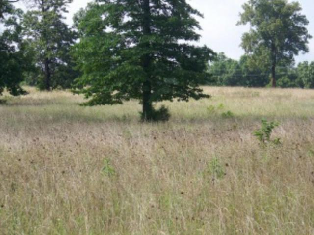 Tbd Lot 15 Private Road 7201, West Plains, MO 65775 (MLS #60007326) :: Greater Springfield, REALTORS