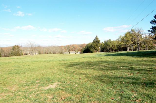 Lot 10 Kicking Mule Lane, Lampe, MO 65681 (MLS #60013513) :: Team Real Estate - Springfield
