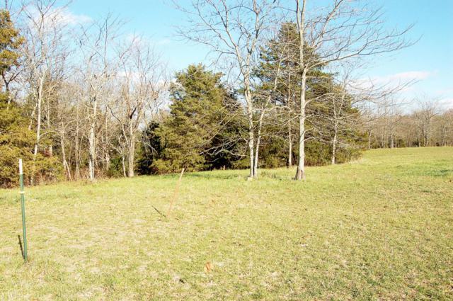 Lot 11 Kicking Mule Lane, Lampe, MO 65681 (MLS #60013514) :: Greater Springfield, REALTORS