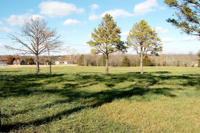 Lot 13 Kicking Mule Lane, Lampe, MO 65681 (MLS #60013519) :: Greater Springfield, REALTORS