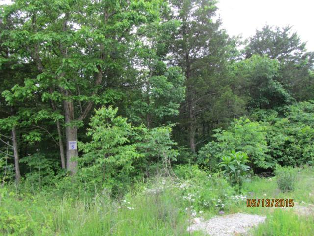 397 Shore Acres Dr. Drive, Powersite, MO 65731 (MLS #60025733) :: Team Real Estate - Springfield