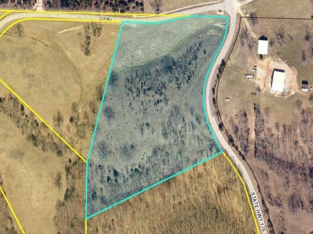 Lot 2 Hwy 176, Chestnutridge, MO 65630 (MLS #60030299) :: Team Real Estate - Springfield