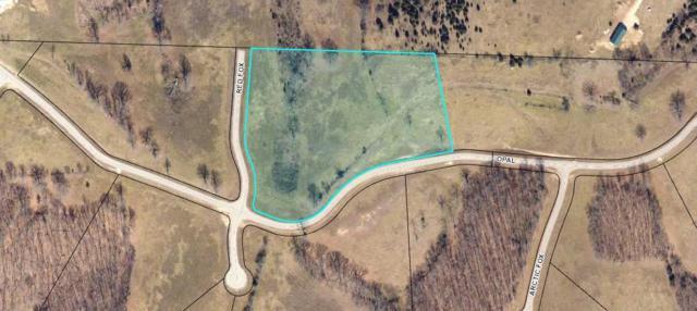 Lot 20 Opal Lane, Chestnutridge, MO 65630 (MLS #60033237) :: Team Real Estate - Springfield