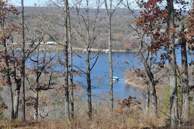 Tbd Snowden Lane, Blue Eye, MO 65611 (MLS #60040210) :: Good Life Realty of Missouri