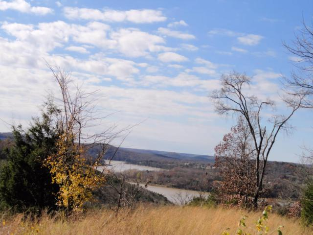 Lot 24 Hanging Branch Rdg, Cape Fair, MO 65624 (MLS #60040521) :: Clay & Clay Real Estate Team