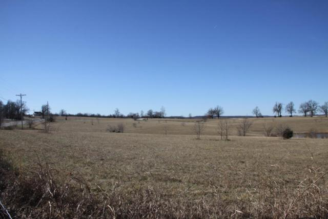 0 Hill Country Road, Harrison, AR 72601 (MLS #60043692) :: Sue Carter Real Estate Group