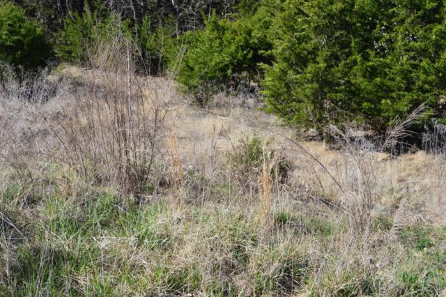 Lot 181 Silver Sunset, Kimberling City, MO 65686 (MLS #60047467) :: Greater Springfield, REALTORS