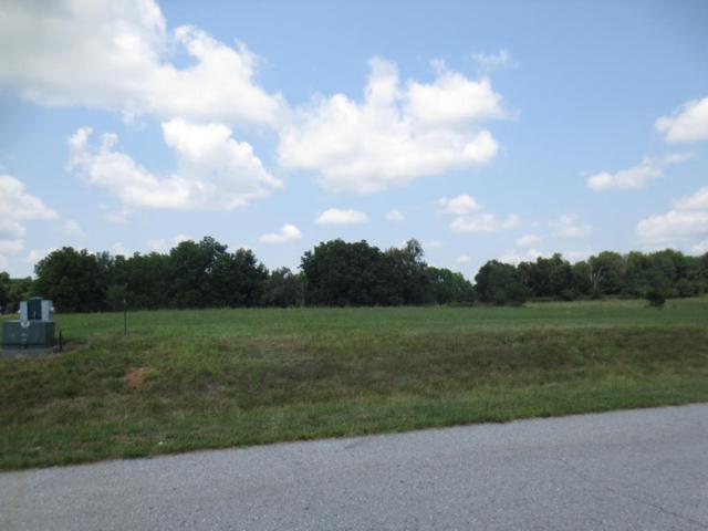 Lot 61 Robins Nest Hill, Mt Vernon, MO 65712 (MLS #60055434) :: Team Real Estate - Springfield