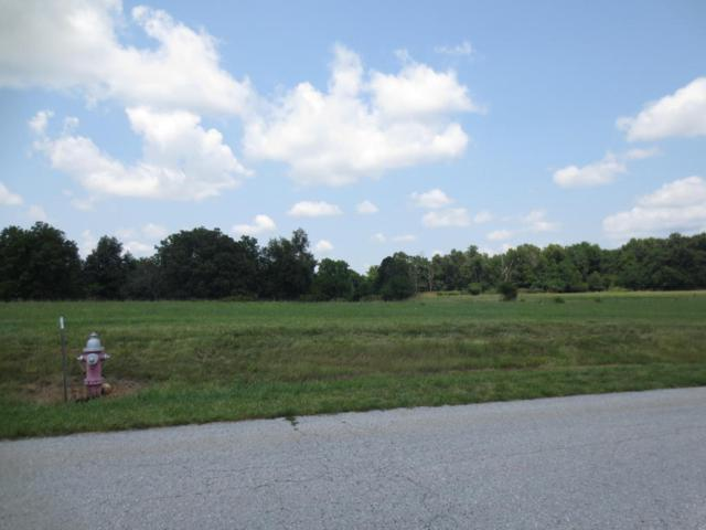 Lot 62 Robins Nest Hill, Mt Vernon, MO 65712 (MLS #60055435) :: Good Life Realty of Missouri