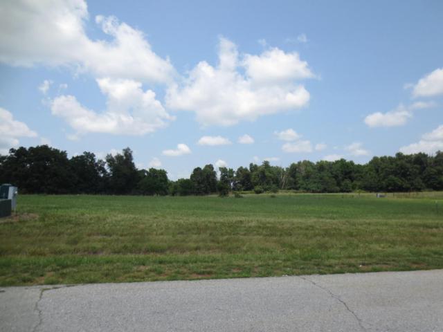Lot 63 Robins Nest Hill, Mt Vernon, MO 65712 (MLS #60055436) :: Team Real Estate - Springfield