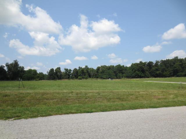 Lot 64 Robins Nest Hill, Mt Vernon, MO 65712 (MLS #60055438) :: Team Real Estate - Springfield
