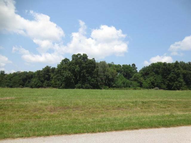 Lot 68 Robins Nest Hill, Mt Vernon, MO 65712 (MLS #60055443) :: Good Life Realty of Missouri