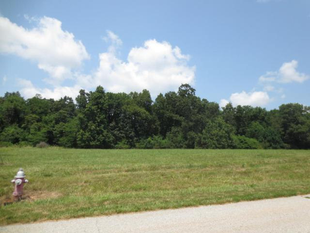 Lot 70 Robins Nest Hill, Mt Vernon, MO 65712 (MLS #60055451) :: Good Life Realty of Missouri