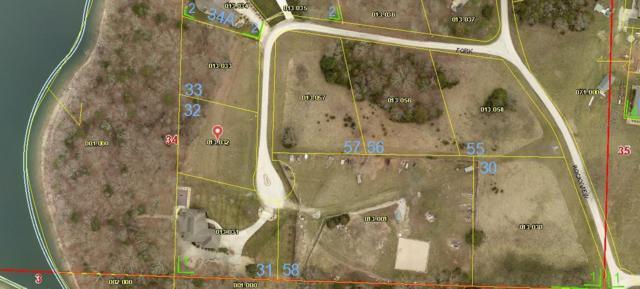 32 North Fork Lane, Shell Knob, MO 65747 (MLS #60057818) :: Greater Springfield, REALTORS