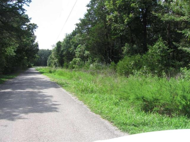 Lot 3, 4 Kings River Pines, Golden, MO 65658 (MLS #60060523) :: Greater Springfield, REALTORS