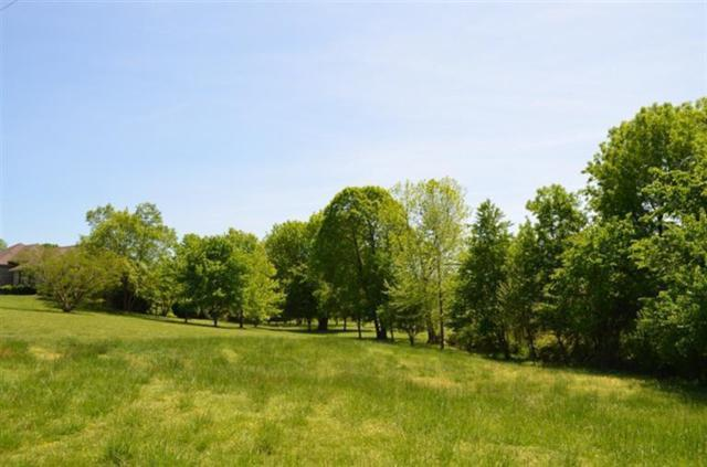 0-Lot 15 W Bonita, Springfield, MO 65803 (MLS #60064094) :: Team Real Estate - Springfield