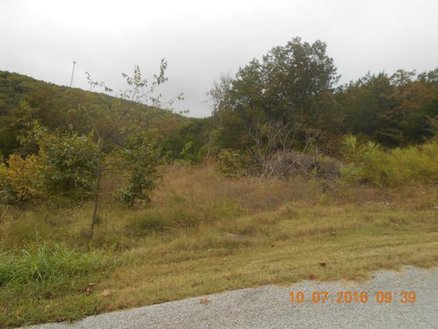 Lot 7 Pine Woods Village Drive, Hollister, MO 65672 (MLS #60064378) :: Sue Carter Real Estate Group