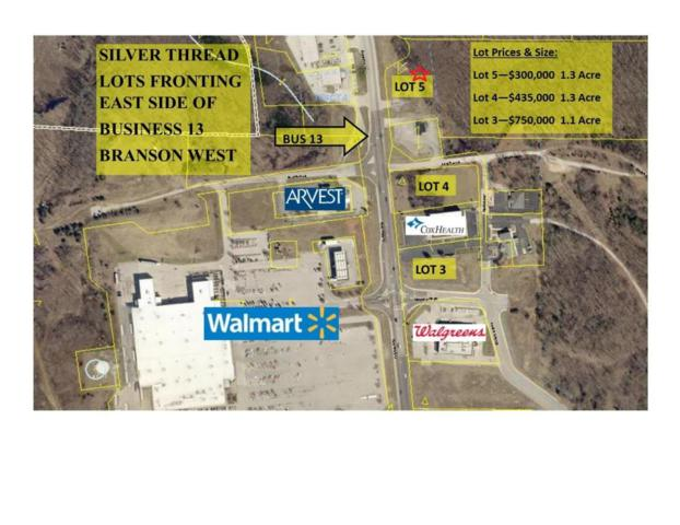 18540 Business 13, Branson West, MO 65737 (MLS #60067261) :: Sue Carter Real Estate Group