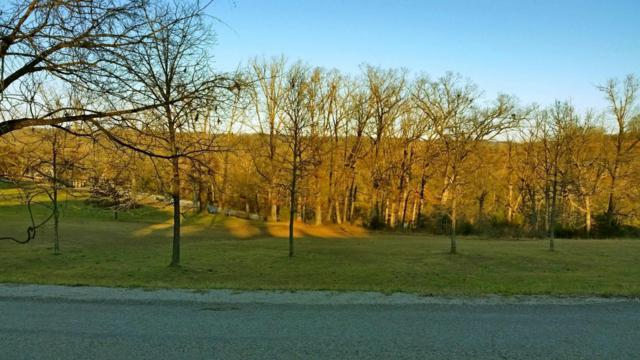 221 Jacks Hollow Road Lot 74, Walnut Shade, MO 65771 (MLS #60068758) :: Greater Springfield, REALTORS