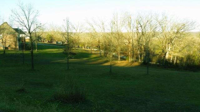211 Jacks Hollow Road Lot 75, Walnut Shade, MO 65771 (MLS #60068760) :: Greater Springfield, REALTORS