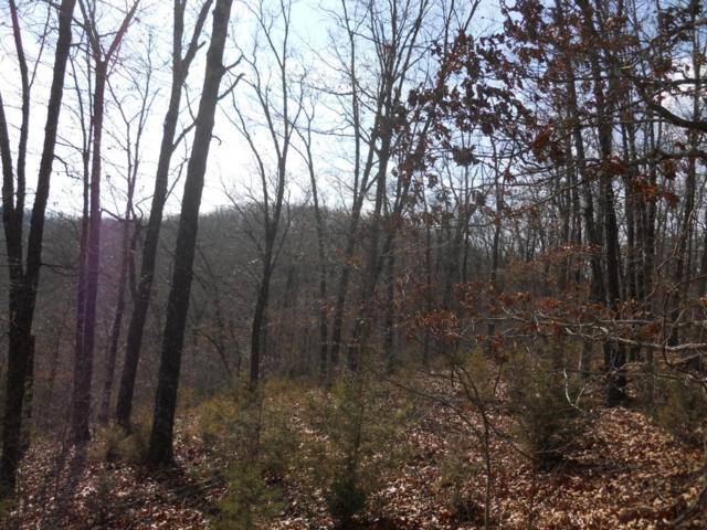 Lot 9 Little Mountain, Reeds Spring, MO 65737 (MLS #60069531) :: Weichert, REALTORS - Good Life