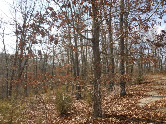 Lt 11 Mills Hollow Road, Branson, MO 65616 (MLS #60069534) :: Massengale Group