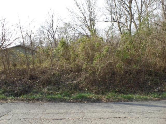 Lots 1 & 2 Catalina Drive, Reeds Spring, MO 65737 (MLS #60074072) :: The Real Estate Riders